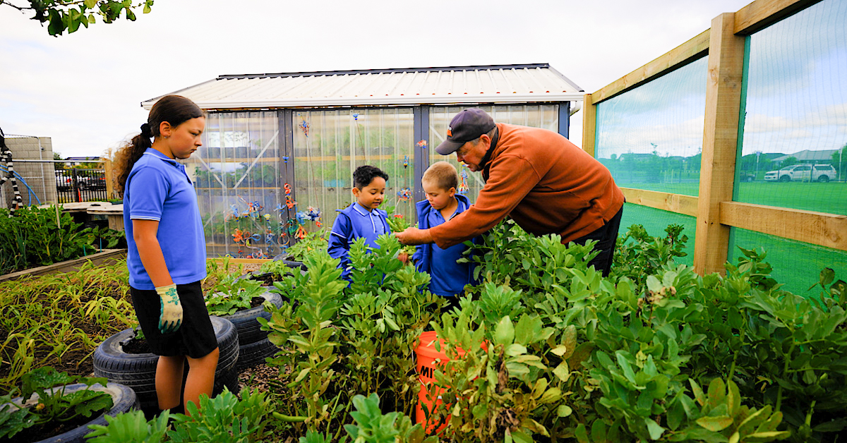 three young school children in blue uniforms with male teacher in a vegetable garden